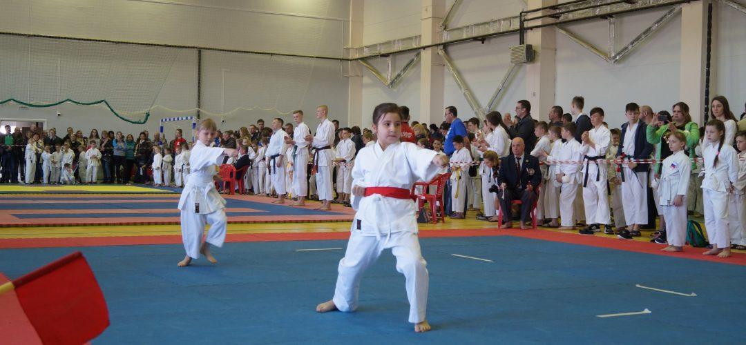 Наши бойцы в сборной области по каратэ