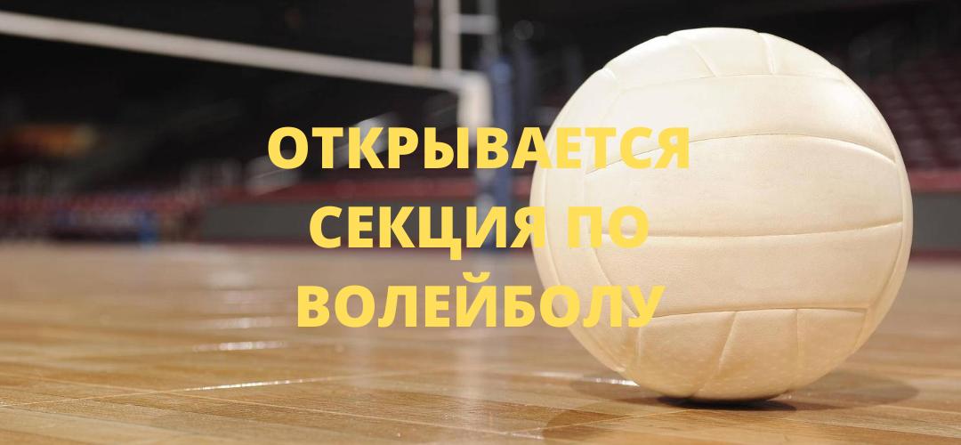 Открываем секцию по волейболу