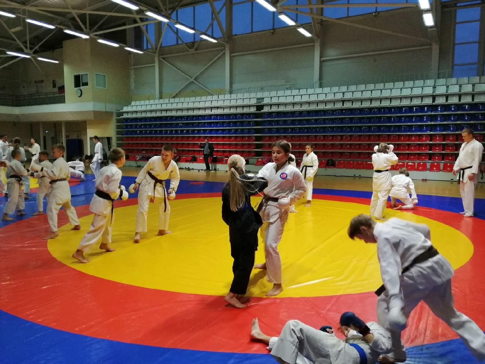 Технический семинар по каратэ